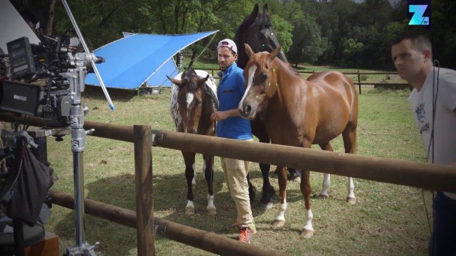 Lachende Pferde für VW-Werbespot echt
